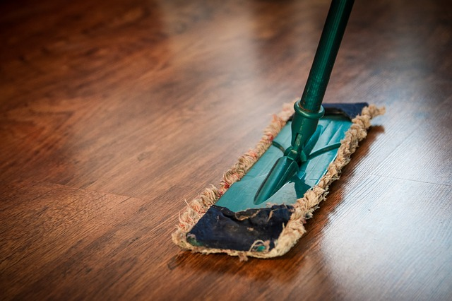 spring cleaning to prevent pests