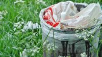rubbish attracts pests