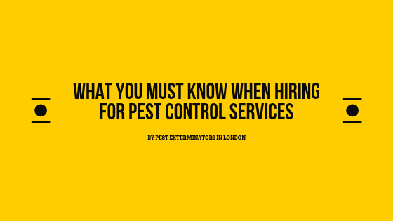 know-when-hiring-for-pest-control