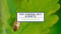 Pest Control Do's & Don'ts