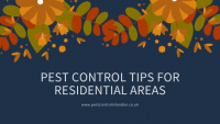 Pest control tips for residential areas