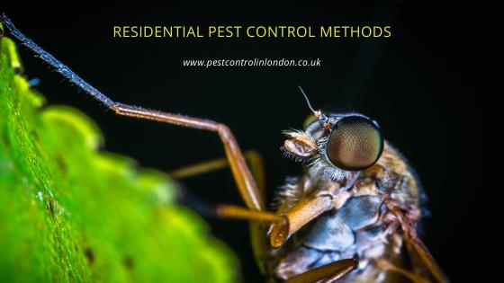 Residential Pest Control Methods