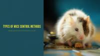 Types of Mice control Methods