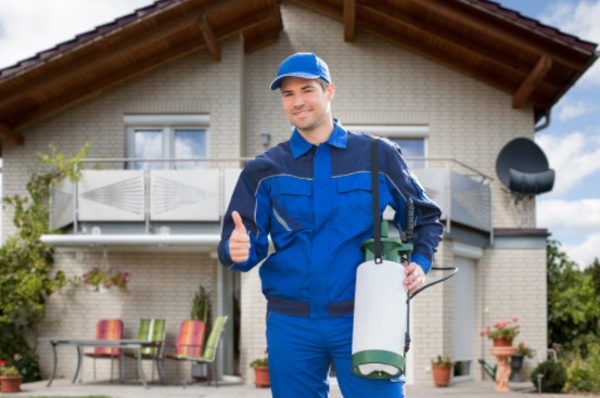 Pest control services for New House