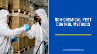 Non-Chemical Pest Control Methods