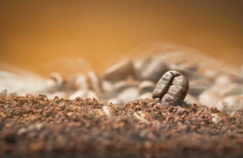 DIY Bed bugs Trap