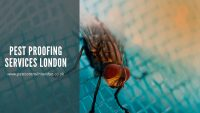 Pest proofing services London