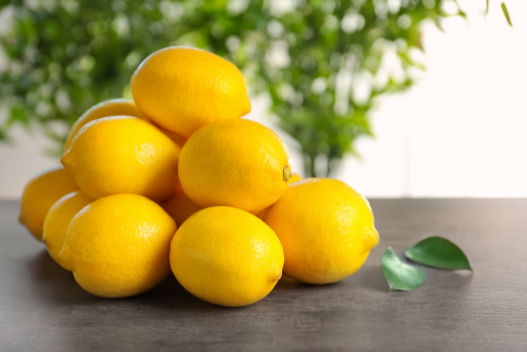 Lemon Bath for flea control