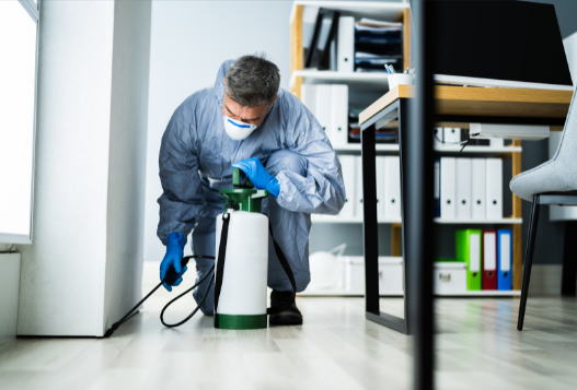 Overcome Pest Problems in your Office