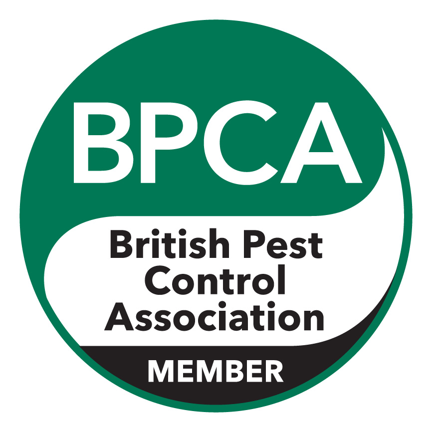 Pest Control London | Local, Reliable Pest Control Experts