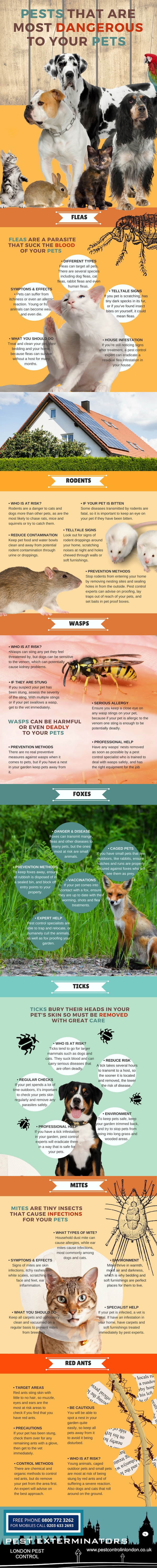 pests that are dangerous to your pets