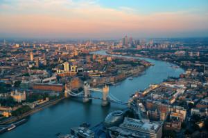 Pest Control South London | Local London Pest Control Experts