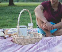 pest free london picnic spot